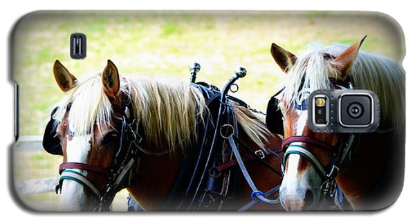 Galaxy S5 Case featuring the photograph Twin Horses by Cathy Shiflett
