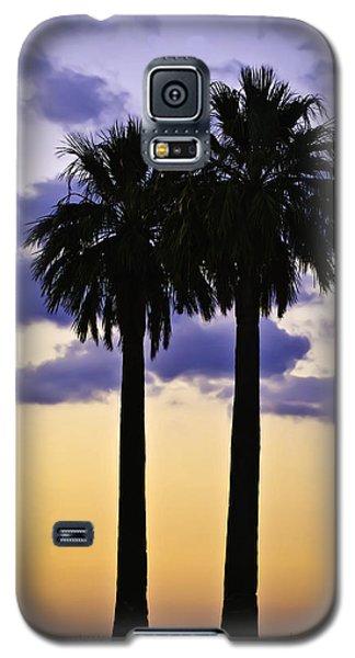 Twin Palms Galaxy S5 Case