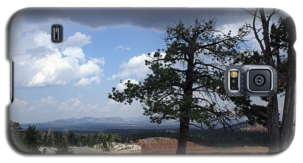 Twin Pines Galaxy S5 Case