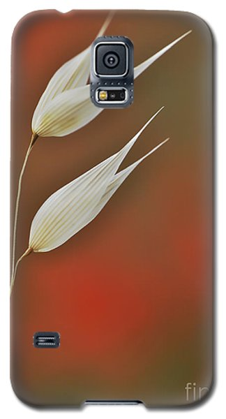 Galaxy S5 Case featuring the photograph Twin by Simona Ghidini