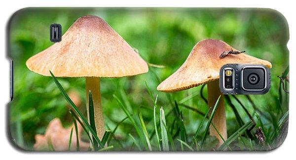 Twin Toadstools. Galaxy S5 Case