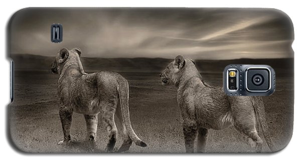 Galaxy S5 Case featuring the photograph Twins 2 by Christine Sponchia