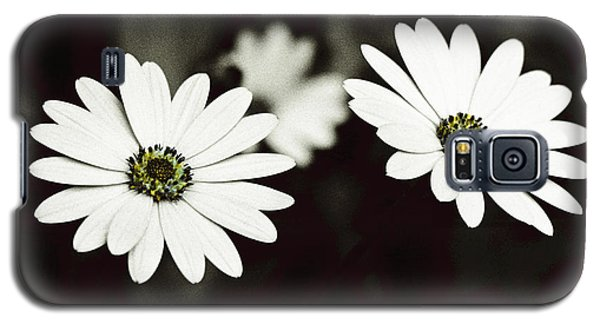 Galaxy S5 Case featuring the photograph Twins  by Lana Enderle