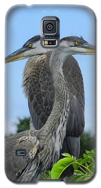 Twins Ready To Fledge Galaxy S5 Case
