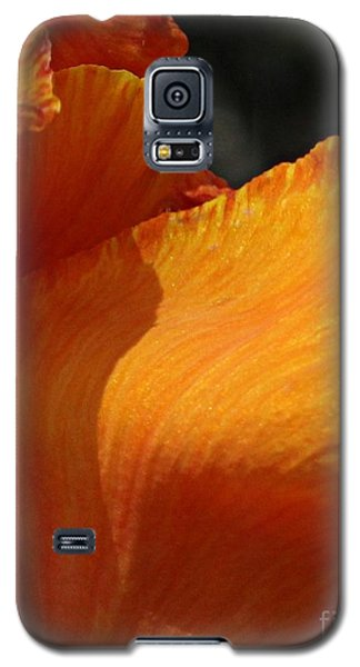 Twist Of Fate Galaxy S5 Case by Geri Glavis