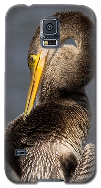 Twisted Bird Galaxy S5 Case