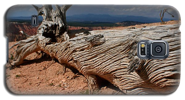 Galaxy S5 Case featuring the photograph Twisted by Jon Emery