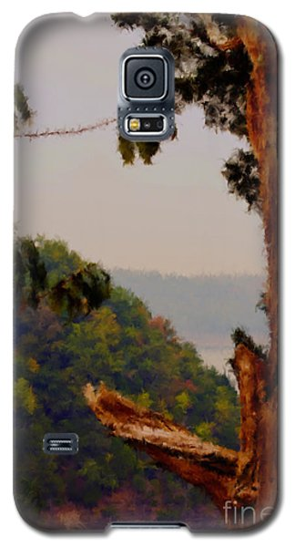 Twisted Tree Overview Galaxy S5 Case by Ken Frischkorn