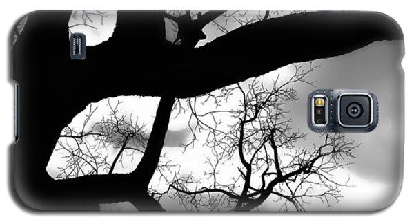 Twisty Tree Silhouette Galaxy S5 Case by Ellen Tully