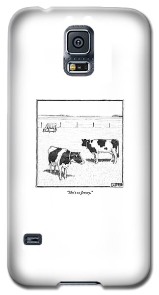 Cow Galaxy S5 Case - Two Spotted Cows Looking At A Jersey Cow by Matthew Diffee
