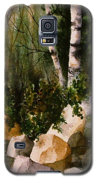 Two Birch By Rocky Stream Galaxy S5 Case by Teresa Ascone