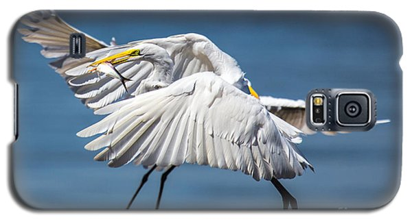 Two Birds And One Fish Galaxy S5 Case by Susi Stroud