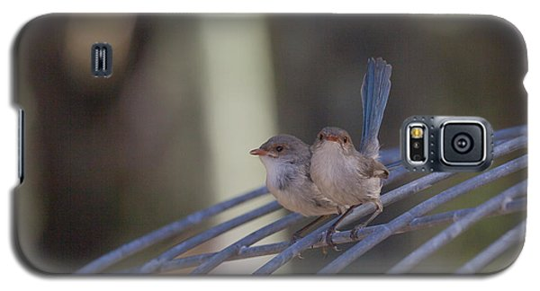 Two Birds On Wire Galaxy S5 Case