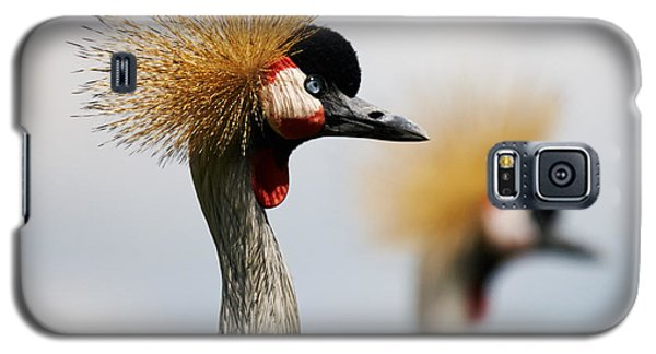 Galaxy S5 Case featuring the photograph Two Black Crowned Cranes by Nick  Biemans