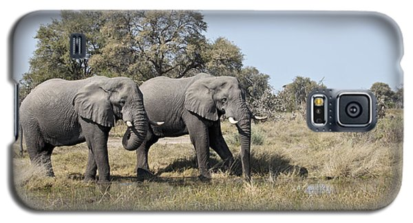 Galaxy S5 Case featuring the photograph Two Bull African Elephants - Okavango Delta by Liz Leyden