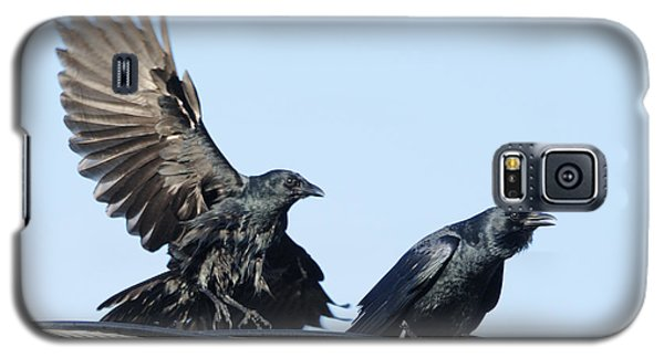Two Crows On A Wire Galaxy S5 Case by Bradford Martin