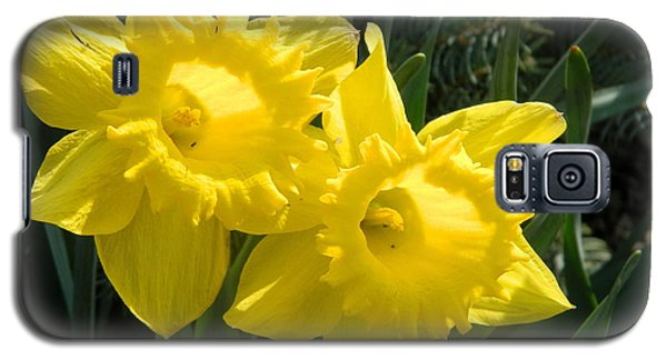 Galaxy S5 Case featuring the photograph Two Daffodils by Kathy Barney
