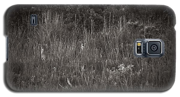 Galaxy S5 Case featuring the photograph Two Deer Hiding by Bradley R Youngberg