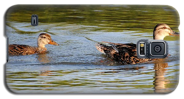 Two Ducks Swimming Galaxy S5 Case