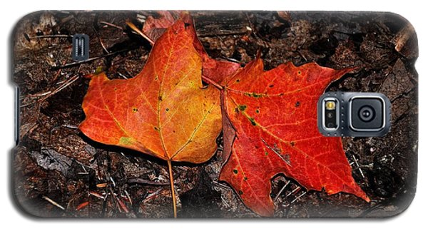 Two Fallen Autumn Leaves Galaxy S5 Case