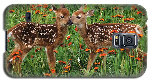 Galaxy S5 Case featuring the photograph Two Fawns Talking by Chris Scroggins
