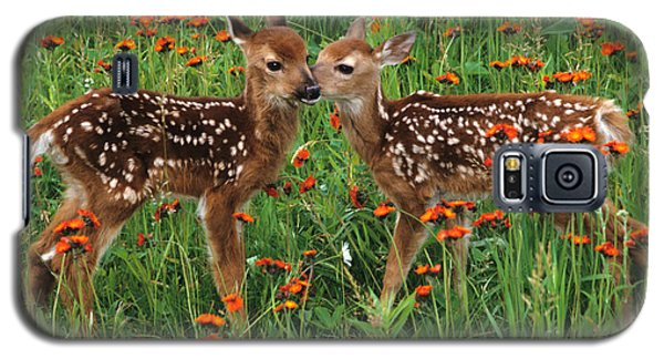 Two Fawns Talking Galaxy S5 Case by Chris Scroggins