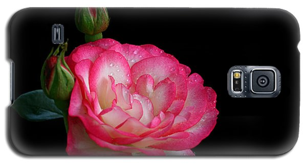 Galaxy S5 Case featuring the photograph Buddies by Doug Norkum