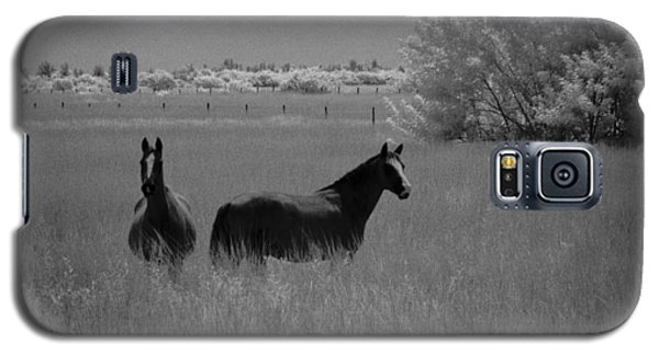 Galaxy S5 Case featuring the photograph Two Horses by Bradley R Youngberg