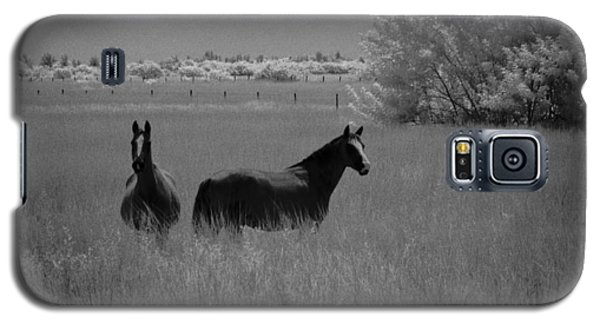 Two Horses Galaxy S5 Case