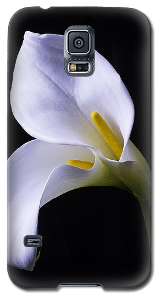 Lily Galaxy S5 Case - Two In Love by Garry Gay