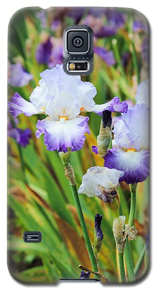 Galaxy S5 Case featuring the photograph Two Iris by Patricia Babbitt