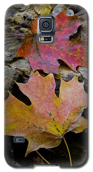 Two Leaves Galaxy S5 Case