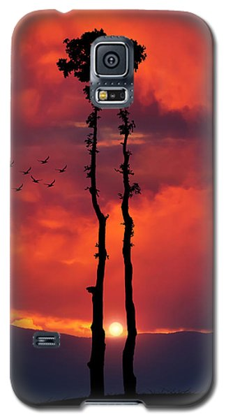 Two Oaks Together In The Field At Sunset Galaxy S5 Case