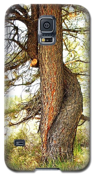 Two Pines Intertwined  Galaxy S5 Case