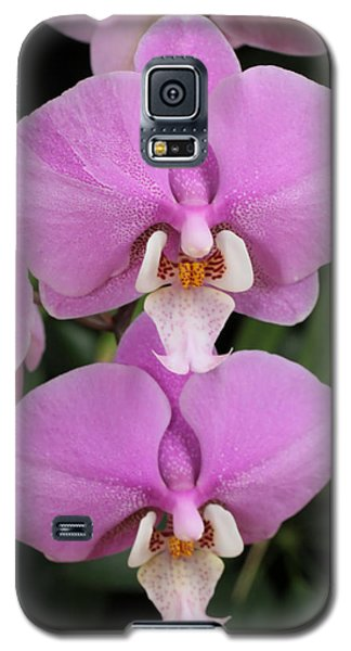 Galaxy S5 Case featuring the photograph Two Pink Moth Orchids by Harold Rau