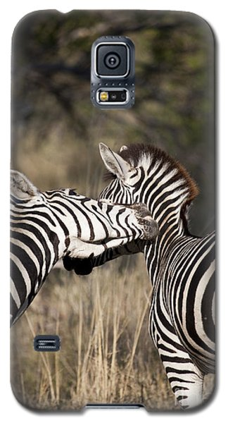 Galaxy S5 Case featuring the photograph Two Plains Zebra Botswana by Liz Leyden