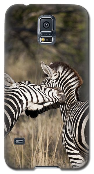 Two Plains Zebra Botswana Galaxy S5 Case