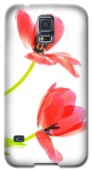 Two Red Transparent Flowers Galaxy S5 Case
