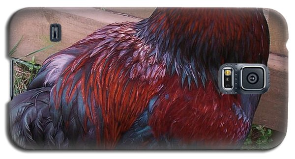 Two Roosters Galaxy S5 Case by Eric  Schiabor