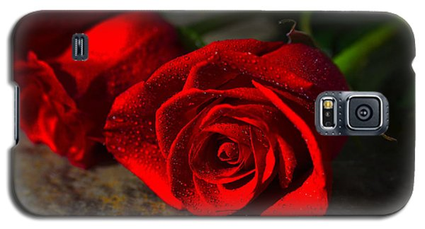 Two Roses Galaxy S5 Case by Richard Stephen