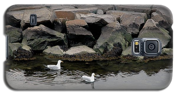 Two Seagulls Galaxy S5 Case by Dorin Adrian Berbier