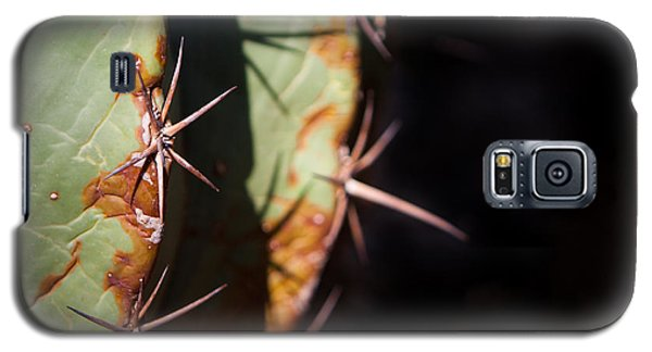 Galaxy S5 Case featuring the photograph Two Shades Of Cactus by John Wadleigh