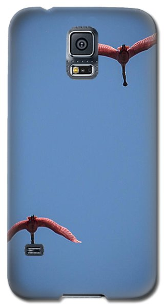 Two Spoonbills Overflying The Swamp Galaxy S5 Case