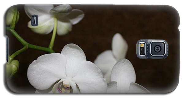 Galaxy S5 Case featuring the photograph Two To Bloom by Cathy Dee Janes