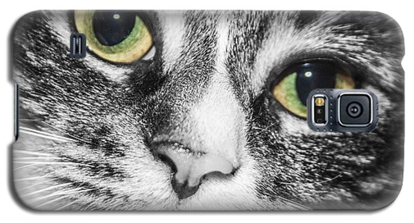 Two Toned Cat Eyes Galaxy S5 Case by Jeannette Hunt