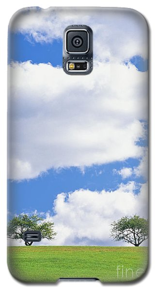 Two Trees Galaxy S5 Case by Alan L Graham