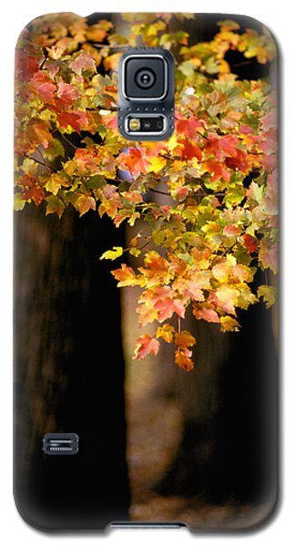 Two Trees Galaxy S5 Case