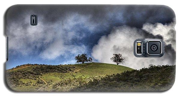 Two Trees Ventura Galaxy S5 Case by Joe  Palermo