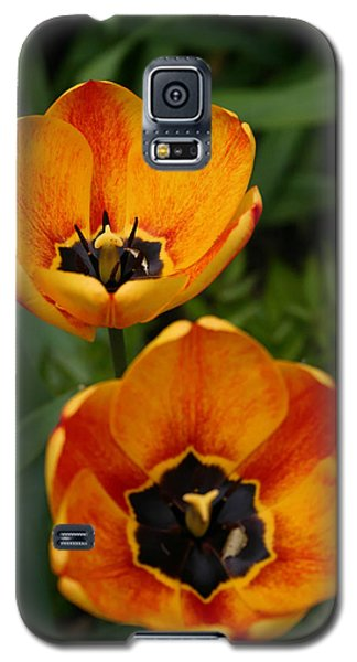 Two Tulips Galaxy S5 Case by Denyse Duhaime