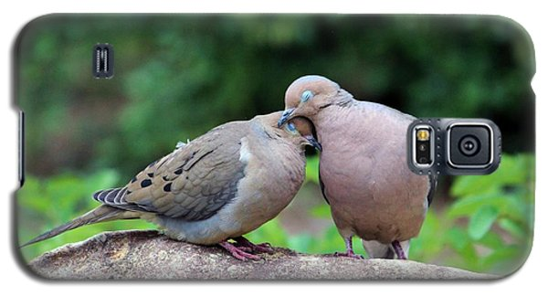 Two Turtle Doves Galaxy S5 Case by Cynthia Guinn